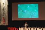 TEDxNewBedford: Greg Skomal – Seeing Deeper into the White Shark's World
