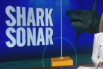9NEWS: Sonar shark detection system trialled at Bondi Beach