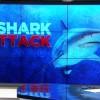 CBS Miami: Diver Attacked By Bull Shark Off Riviera Beach