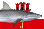 Gibraltar enacts new legislation protecting Sharks, Rays and Skates