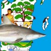 Belize: Sharks and Rays management and conservation initiatives