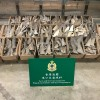 Hong Kong Customs seizes suspected scheduled dried shark fins