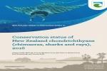 Conservation status of New Zealand chondrichthyans 2016