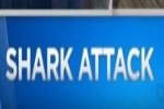 CBS News: SoCal Beach Shut Down After Shark Attacks Teen