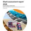 AUS Shark assessment report  2018