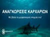 MOOC: ID sharks with their morphological characteristics (in Greek)