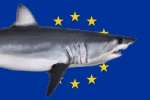 European Commission registers 'Stop Finning – Stop the trade' initiative