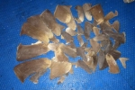 Sri Lanka: 08 persons apprehended with a stock of shark fins