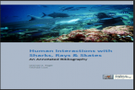 Human Interactions with Sharks, Rays & Skates