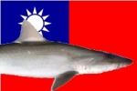 Taiwan: Heavy fines for shark finning and retention of prohibited species