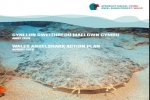 Wales Angelshark Action Plan
