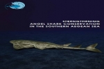 Strengthening Angel Shark Conservation in the Southern Aegean Sea