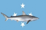 Taiyo Micronesia Corporation Criminally Charged for Unlawful Removal of Shark Fins