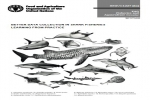 FAO: Better data collection in shark fisheries