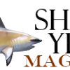 Shark Identification Videos