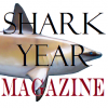 Aquarium Lecture Series: Shark Research Confessions