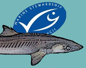 MSC logo_dogfish