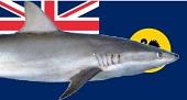 Western Australia Flag_2a