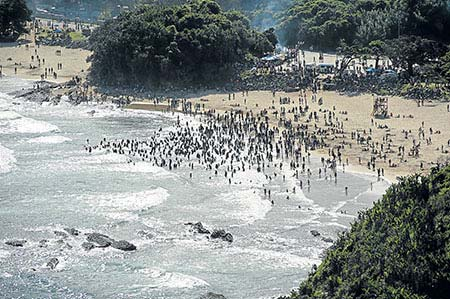 A busy Second Beach in Port St Johns shows bathers in the water on December 26, 2012, the day after yet another shark attack.