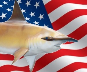 united-states-flag-shark_2