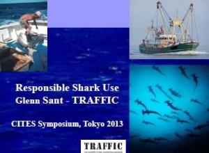 pdf_responsible shark use traffic