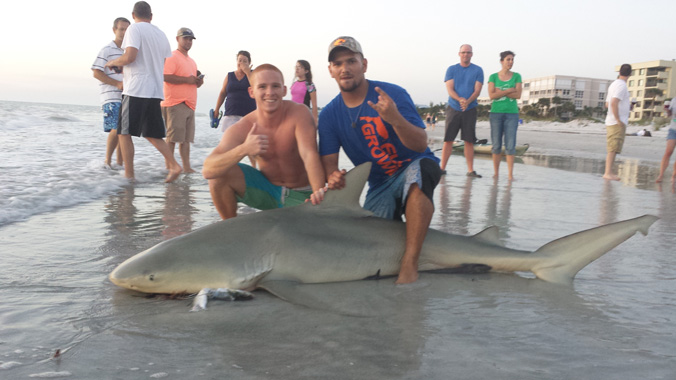 Man pulls aggressive 8 foot bull shark onto indian shores for Betts fishing center