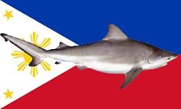 Philippines_flag_shark