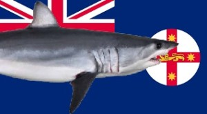 Flag_NSW_shark